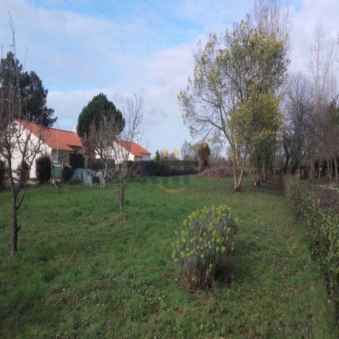 Offres de vente Terrain Saint-Hilaire-la-Forêt (85440)